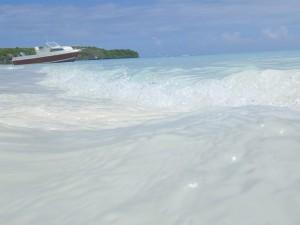 ニューカレドニアへの新婚旅行 ブラシ島にて